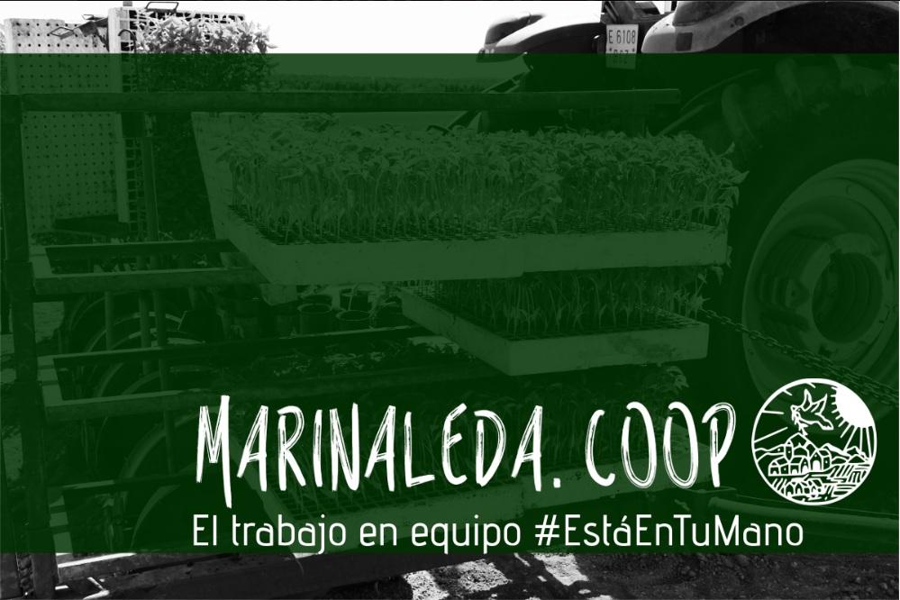 marinaleda_0